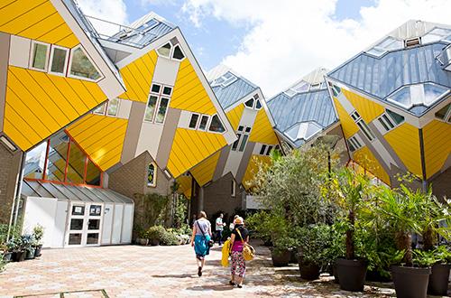 ErasmusMC-discoverRotterdam-Cubes